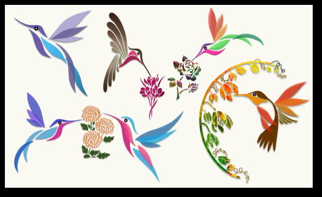Humming Birds – Illustration