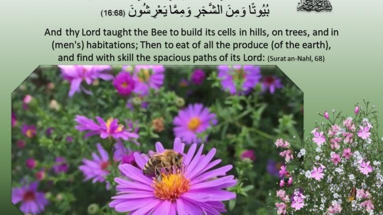 Surat An Nahl, Ayat 68