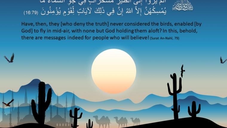 Surat An Nahl, Ayat 79