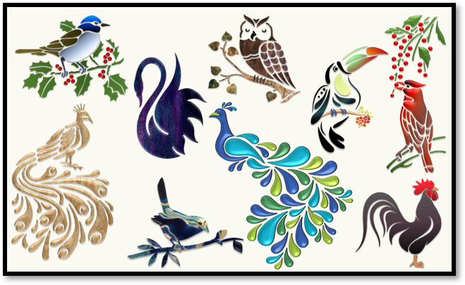Birds – Illustrations