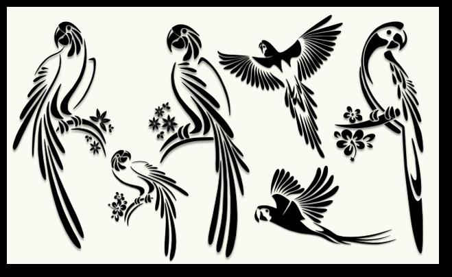 Birds – Silhouettes
