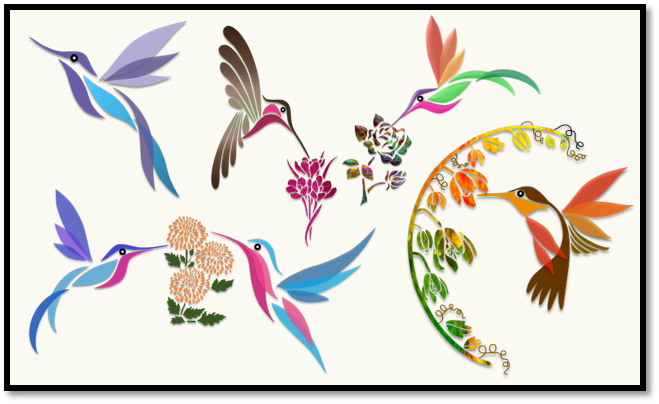 Humming Birds – Illustration