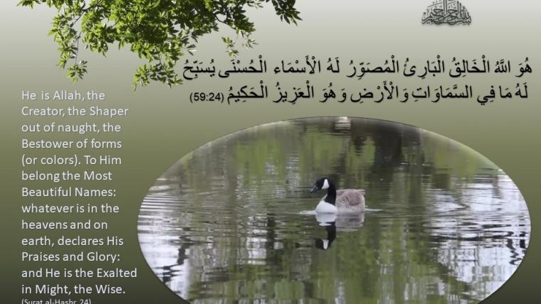 Surat Al Hashr, Ayat 24