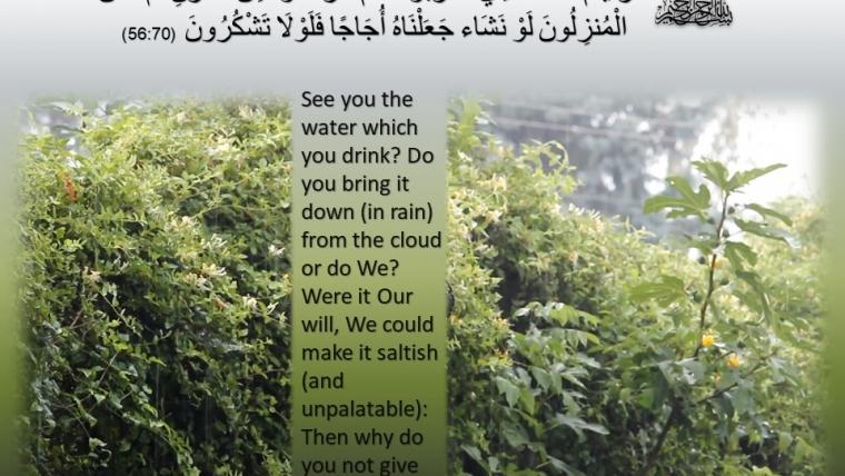 Surat Al Waqia, Ayat 68-70